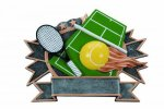 Sports Plate Tennis Academic Accolade Plate Trophy Awards