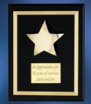 Acrylic Plaque with Brass Star Employee Awards