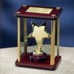Brass Star Enclosed in Glass Box Patriotic Awards