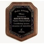 Marble Magic Shield Plaque Shield Plaques